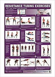 Back Workout Chart Step By Step Resistance Tubing Exercises Poster Chart Back Legs Biceps