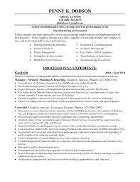 Cfo Resume Examples Resume For Study
