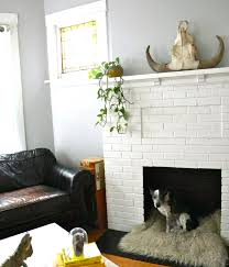 a non working fireplace can be converted to a pet bed