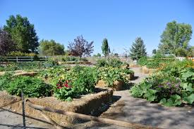 Heritage Park by Wendy Hanson Mazet – Northern Nevada Horticulture
