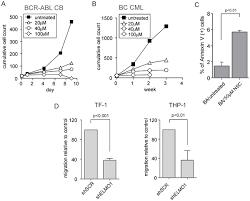 elmo1 is upregulated in aml cd34 stem progenitor cells mediates thumbnail