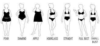 Sears Women Clothes Petite Suits Women Size Chart Women