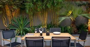 Patio and bamboo garden design ideas