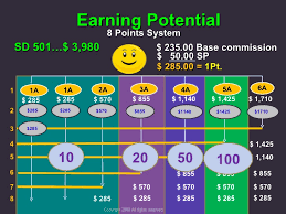 Enagic Compensation Plan Chart Enagic Ppt Jayvee