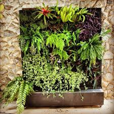 Small Picture 69 best Vertical Gardens images on Pinterest Vertical gardens