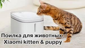 Забота о животных с новой поилкой <b>Xiaomi Kitten</b> & <b>Puppy</b> ...