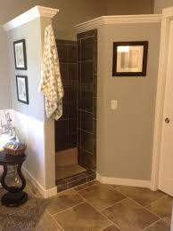 bath glass door cleaning. walk-in shower - great way to keep air circulation and not worry about cleaning a glass door or washing curtains. i hate shower doors. bath