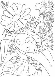 Butterfly Flower Coloring Pages At Getdrawingscom Free For
