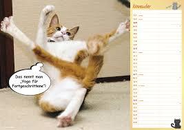 Coole Katzen A3 Duo Kal 2019 Kalender Bei Weltbildde Kaufen