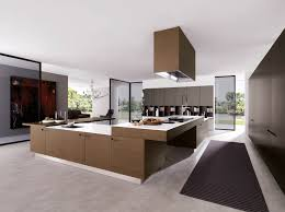 Modern Kitchen Remodel Appealing Modern Kitchen Remodel With L Shape Kitchen Cabinetry