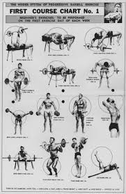 Joe Weider S Bodybuilding System Book And Charts The Weider System Of Progressive Barbell Exercise Physical