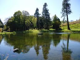 review alnwick garden alnwick garden