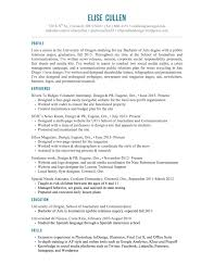 classic resume design sample customer service resume classic resume design classic 1 resume templates to impress any employer classic resume1