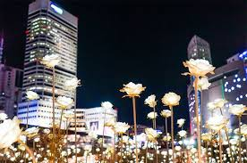 exclusive lighting festivals near seoul