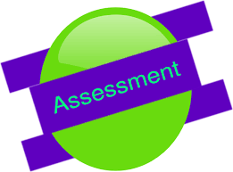 Image result for assessment