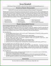 Project Coordinator Resume Template 43 Choices You Should Know