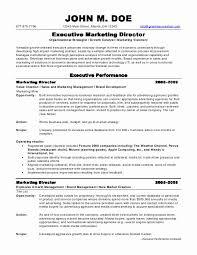 Gallery Of Sample Resumes Marketing Director Resume Director