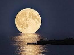 「満月 無料画像」の画像検索結果