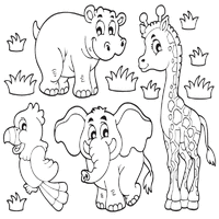 Small Picture Jungle Animals Coloring Pages Surfnetkids