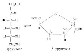 Реферат Углеводы и их свойства Глюкоза com Банк  Углеводы и их свойства Глюкоза
