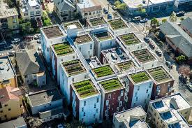 want to build a rooftop farm here is