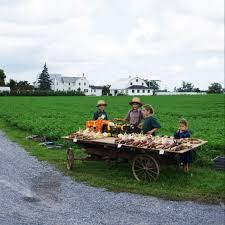work ethic resourcefulness lessons from my amish family amish children lydiaglick com write31days 31amishdays