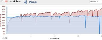 Common Heart Rate Chart Why Cardiac Drift Is Important For Runners Who Train By