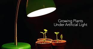 unique indoor lighting. Unique Uv Light For Indoor Plants Growing Under Artificial Using A Grow Lighting