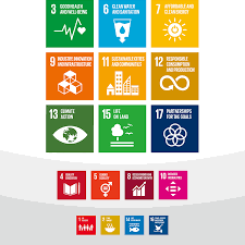 Canon Organizational Chart Relationship With Sdgs Canon Global