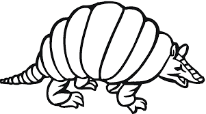armadillo animal coloring pages