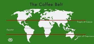 Closed 210 east 2nd street muscatine, ia 52761 The Coffee Belt Mercanta The Coffee Hunters