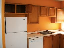 Orange And White Kitchen Home Decor Orange Color Kitchen Cabinets With Appealing Rectangle