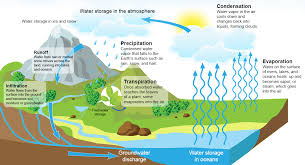 english writing blog english for academic purposes water resources the water cycle ""