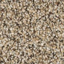 Shop Carpet at Lowes