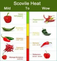 Chilli Hotness Chart 21 Rational Chili Scale