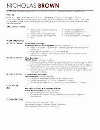 35 Beautiful Full Stack Net Developer Resume Sample Resume