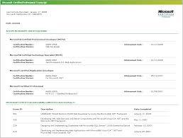 Net Developer Resume Cool Pavel Růžička UX Software Engineer ResumeCV