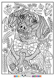Dachshund Coloring Page Crusoe Zileart