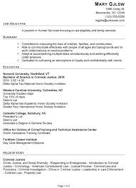 Resume Template Social Services Resume Samples Best Sample Resume
