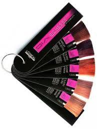 l oréal dia richesse hi visibility color chart