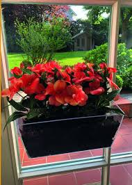flower box improved product