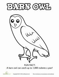Small Picture Barn Owl Worksheet Educationcom