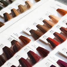 28 Albums Of Garnier Hair Color Chart With Numbers