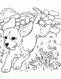 Cute Dog Coloring Pages Zu9x Cute Dog Coloring Pages Cute Dog