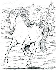 Free Printable Realistic Horse Coloring Pages At Getdrawingscom