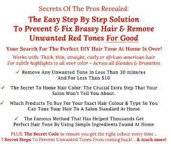 Aveda Demi Permanent Hair Color Chart Sbiroregon Org