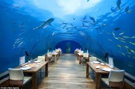 inside of restaurants. Contemporary Inside Restaurant With A View Guests Inside Underwater Restaurant Ithaa Can Dine  On Fivestar On Inside Of Restaurants H