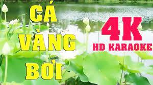 Cá vàng bơi - karaoke - 4K - Nhạc thiếu nhi
