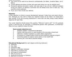 Javascript Resume Resume Builder Javascript Code Krida 14