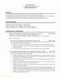 Sap Consultant Resume Download Sap Bi Sample Resume For 2 Years
